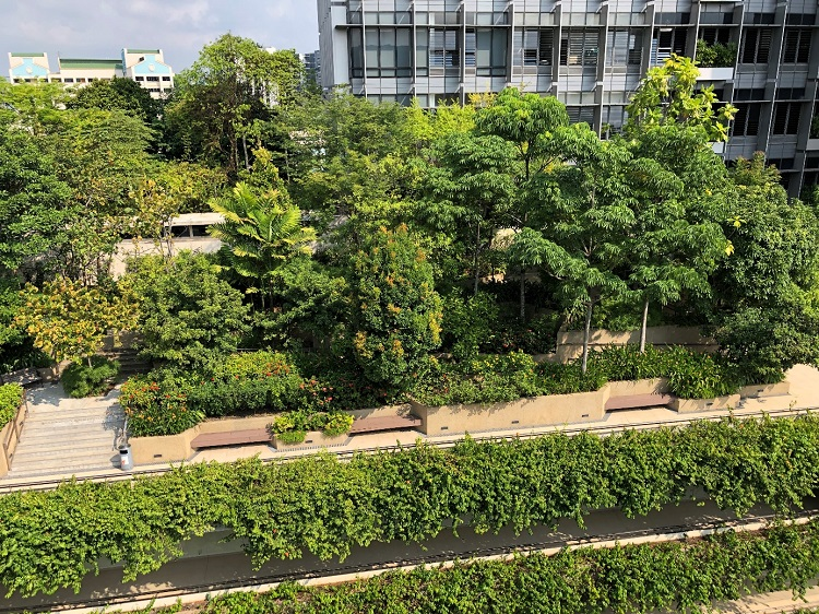 Hình 1. KTPH nằm giữa khu thiên nhiên xanh mát