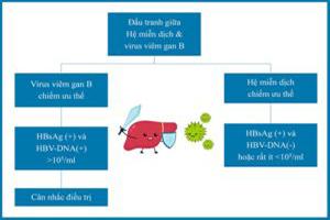 hinh22-qua-trinh-dau-tranh-he-mien-dich-va-virus-viem-gan-B-300×214